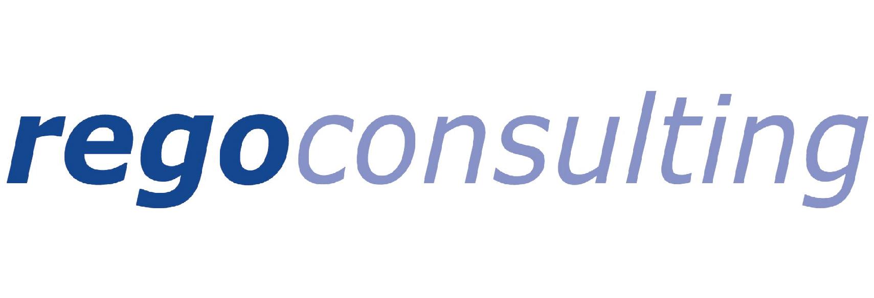 Rego Consulting - webiste